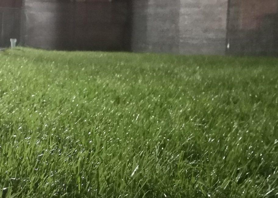 Il Giardino di Enrico Piancaldini