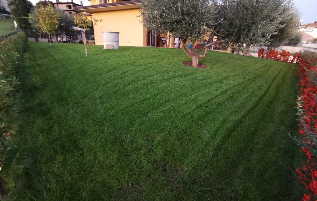 Il Giardino di MAURO75