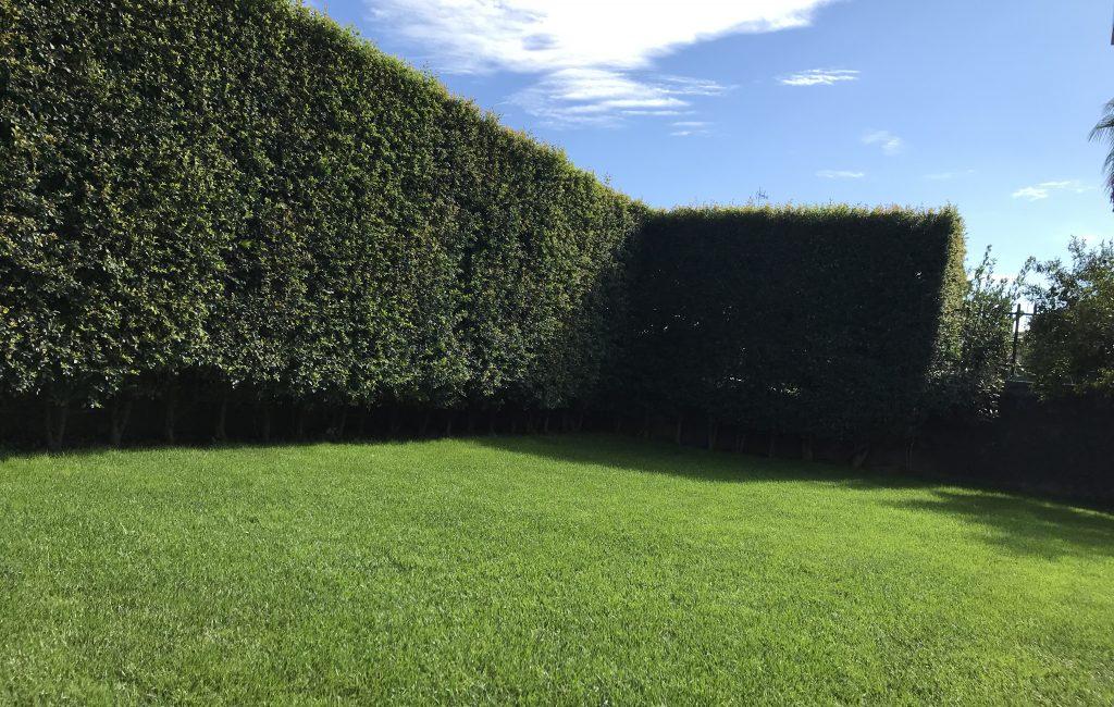 Il Giardino di Renato Valenti